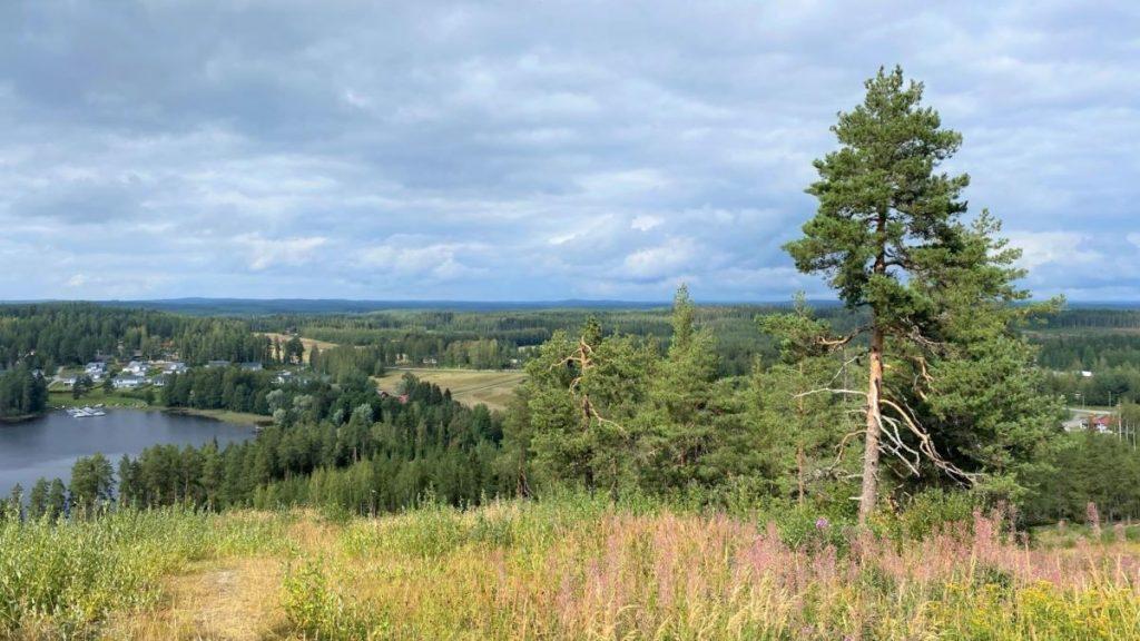View from Savivuori hill at Viitasaari