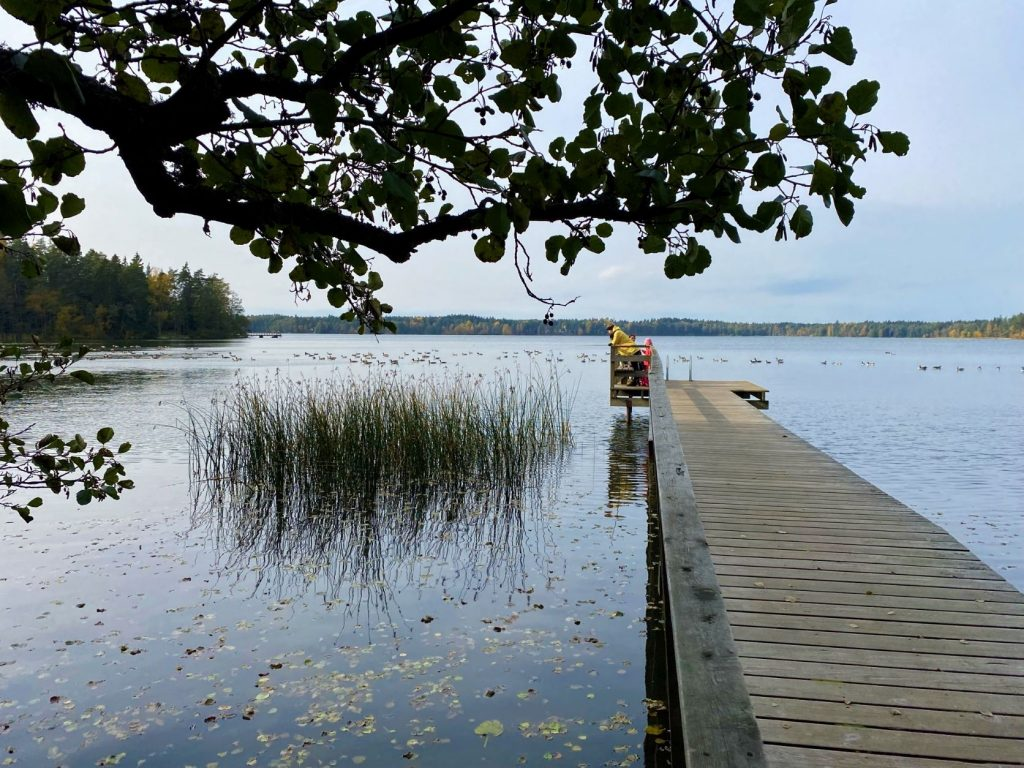 Fishing at Littoistenjärvi